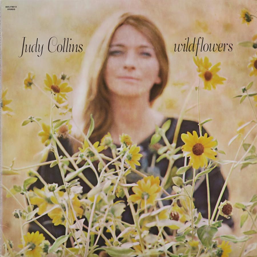 SOA Wildflowers album cover